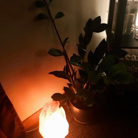 Zz Plant and Salt Lamp