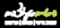 לוגו דימויים מעוצבים