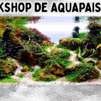 Workshop de Aquapaisagismo no Aquário de Paranaguá