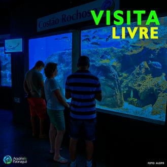 Visita livre no Aquário de Paranaguá