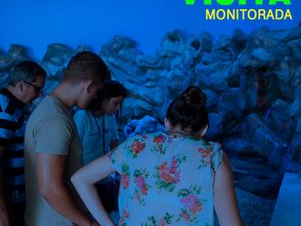 Visita Monitorada no Aquário de Paranaguá