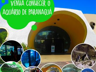 Venha conhecer o mundo marinho de perto no Aquário de Paranaguá nesse final de semana!