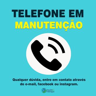 Telefone em Manutenção