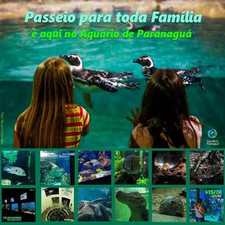 Passeio em família é no Aquário de Paranaguá