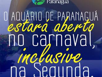 Funcionamento no Carnaval
