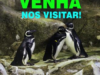 Venha fazer uma visita segura no Aquário de Paranaguá e se divirta!