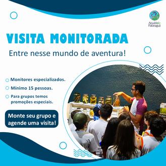 Visita monitorada no Aquário