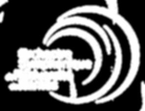 Logo_BLANC_OSUN_fond_transparent_.png