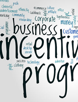 Incentive program word cloud concept on