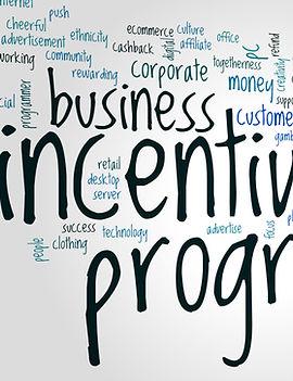 Incentive program word cloud concept on