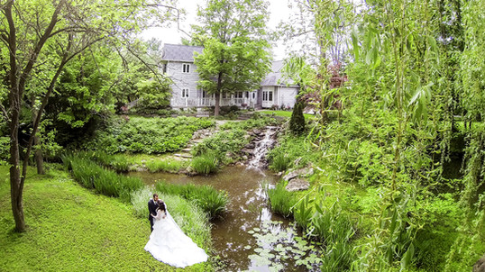 Chalet Studio & Gardens pond and waterfall