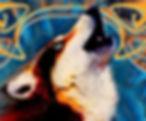 wolf 1_3.JPG