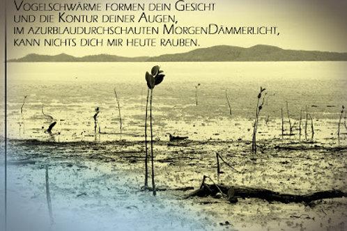Best of Postkartenkollektion (Simon Felix Geiger)