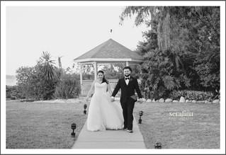 The Wedding of Ashley & Angelo