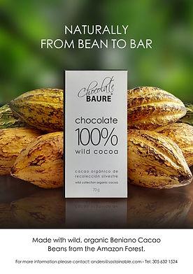 Baure_chocolate.jpg