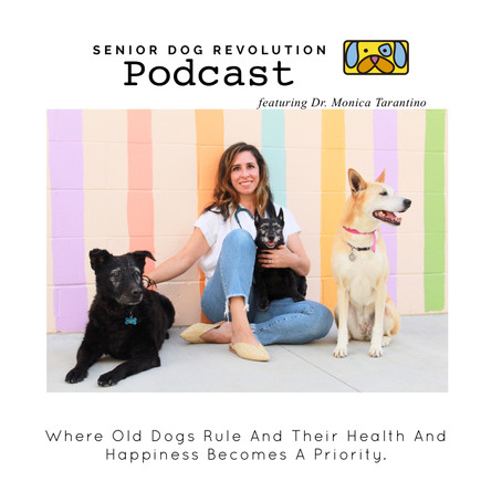 ANNOUNCING THE SENIOR DOG REVOLUTION PODCAST!