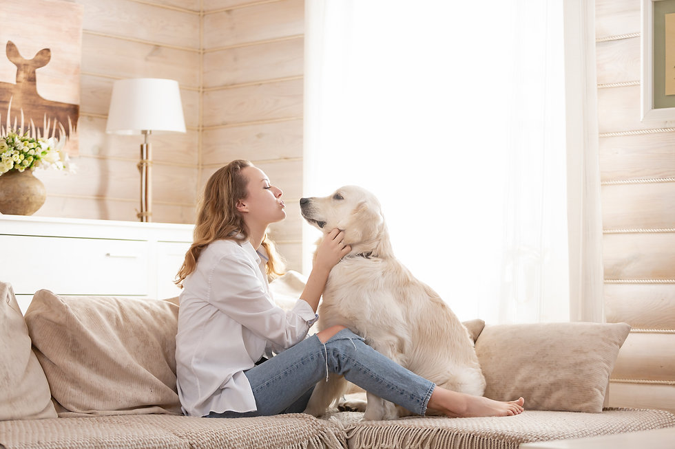 Young pretty woman in casual clothes hugging her beloved big white dog sitting on the sofa