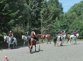 Clases de equitación doma natual