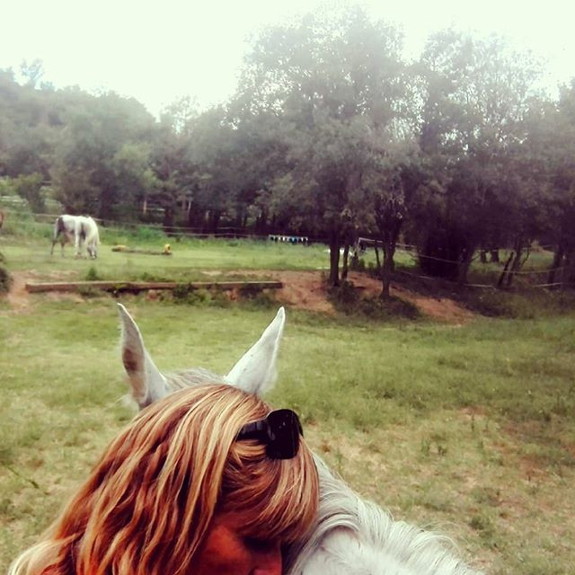 Immersió en el temps dels cavalls... Qui