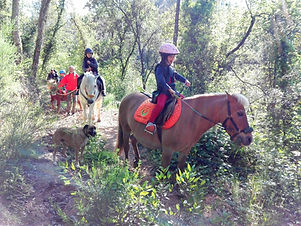 Rutas a caballo en familia. Niños y ponis