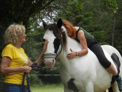 Terapias con caballos de doma natural