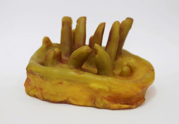 Fungul Fingers (III)