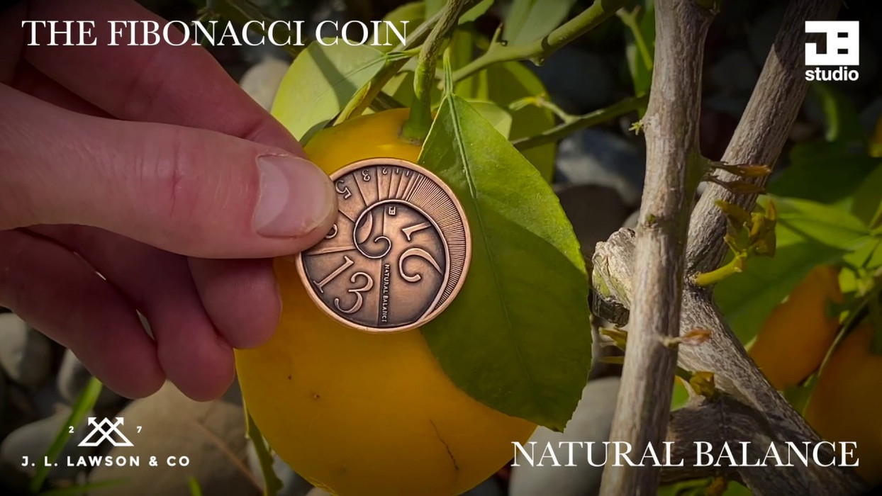 Discover the Fibonacci Series in nature