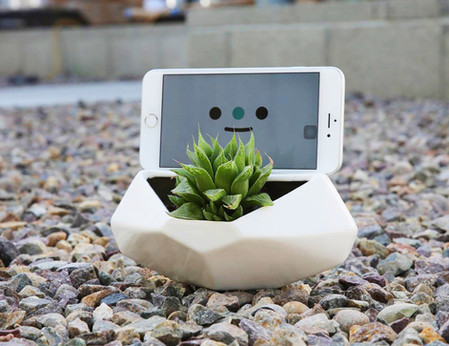 Desktop Dock & Planter