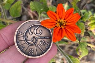 The Fibonacci Coin