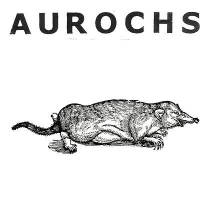 """Aurochs - 7"""""""