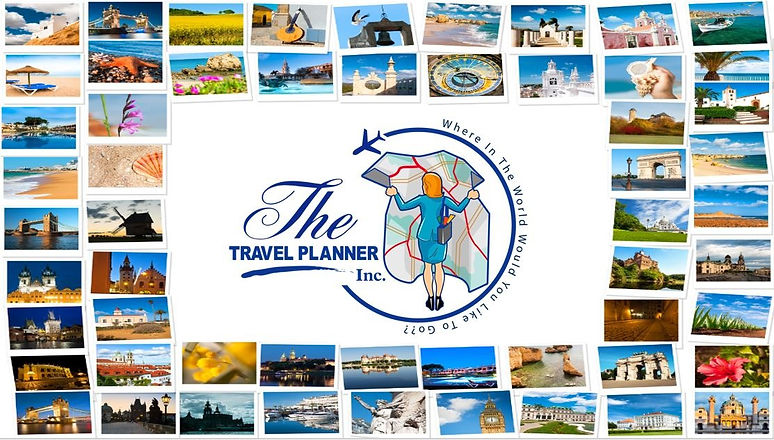 website logo ttpi_edited.jpg