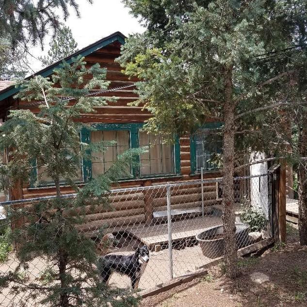 Cabin house front.jpg