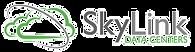 skylink_edited.png