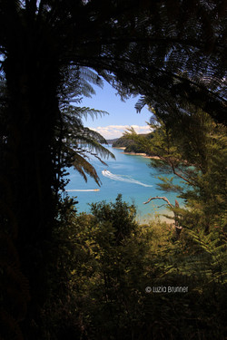 Abel Tasman - New Zealand