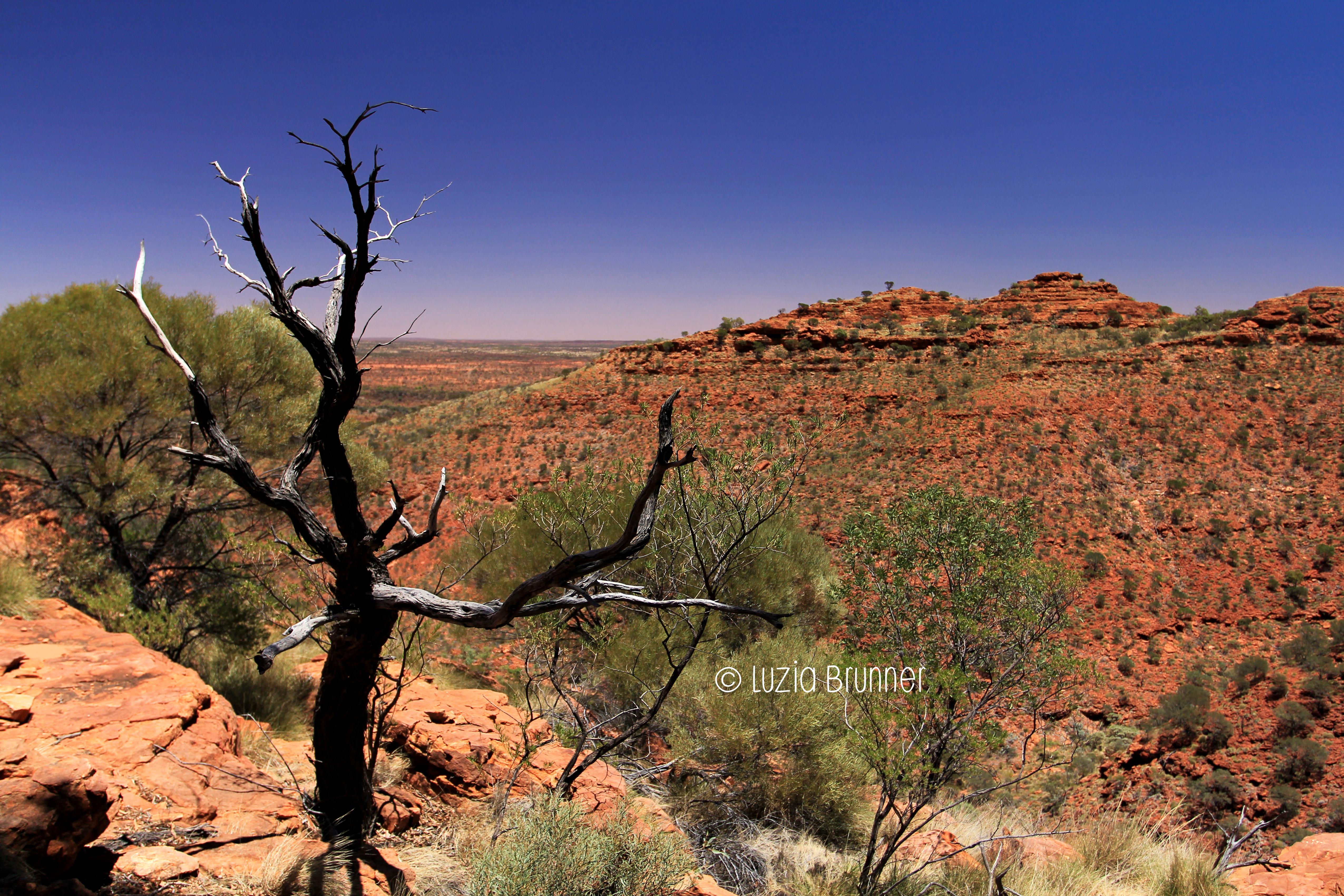 Outback - Australia