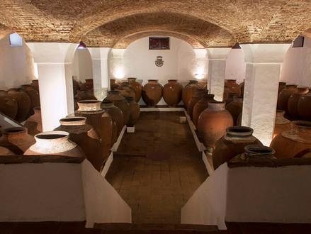Conheça Alentejo, uma das rotas de vinho mais belas em Portugal