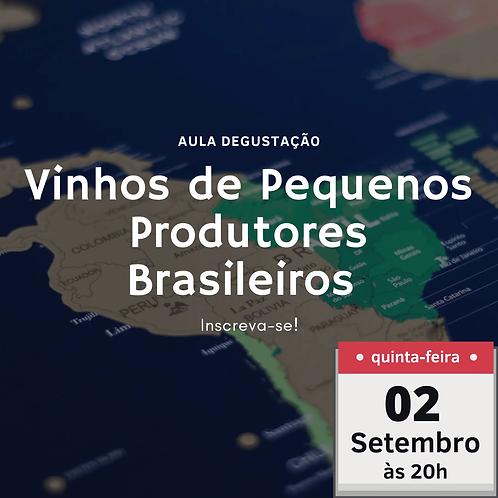 Vinhos de Pequenos Produtores Brasileiros