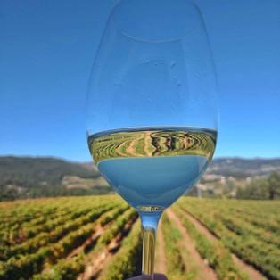 Conheça a Região dos Vinhos Verdes, em Portugal
