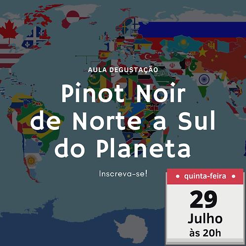 Pinot Noir do Norte a Sul do Planeta