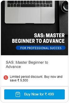 SAS_Master Beginner to Advance.JPG