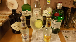 Gin and Fever Tree Tonic