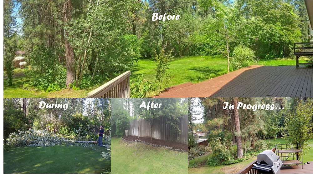 Some of our yard work...still more to do but we are getting there!