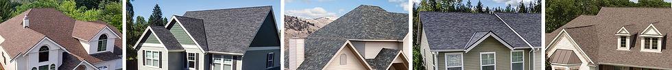 shingles cover photo.jpg