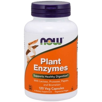 PLANT ENZYMES NOW 120CAPS