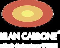 BILAN CARBONE.png