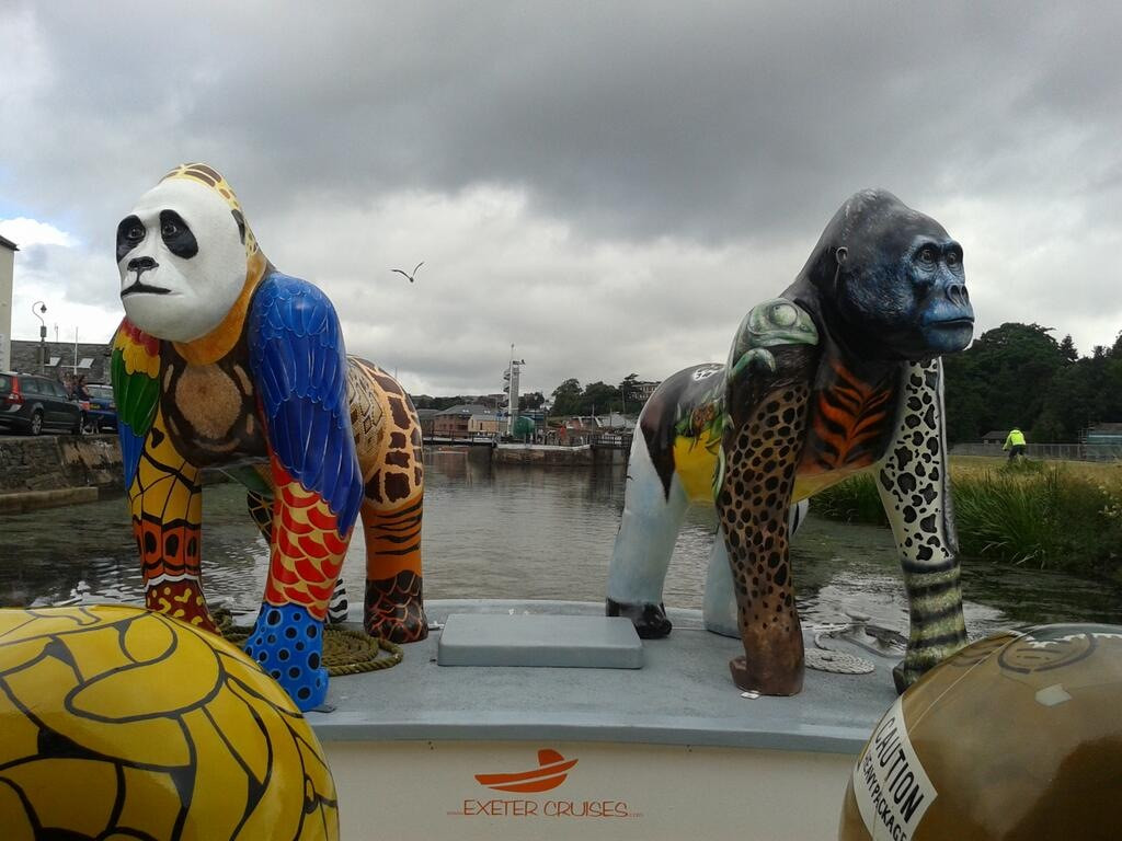 Great Gorillas Flotilla camera 414.jpg
