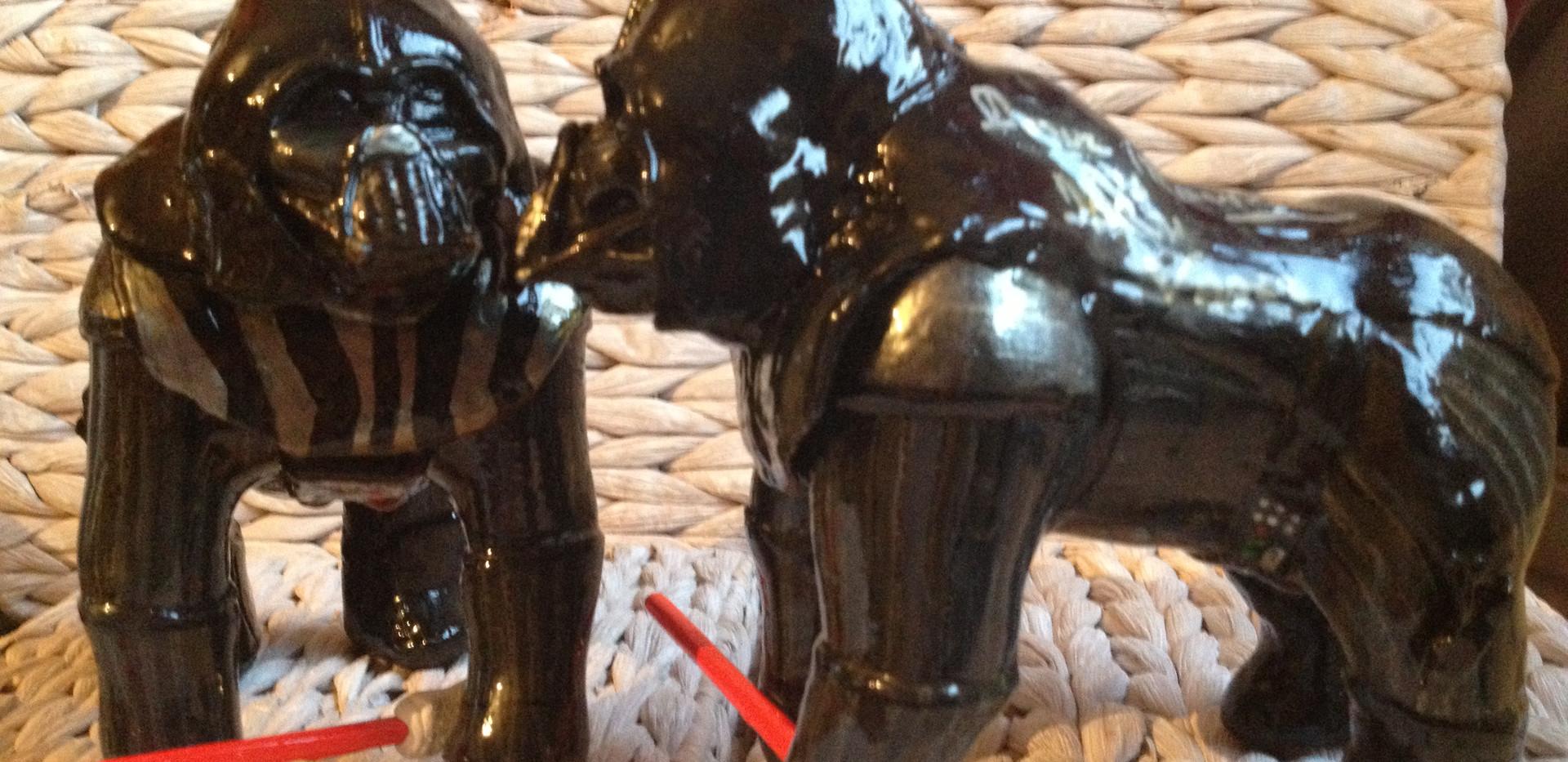 Baby Darth Vader Gorillas 041.jpg