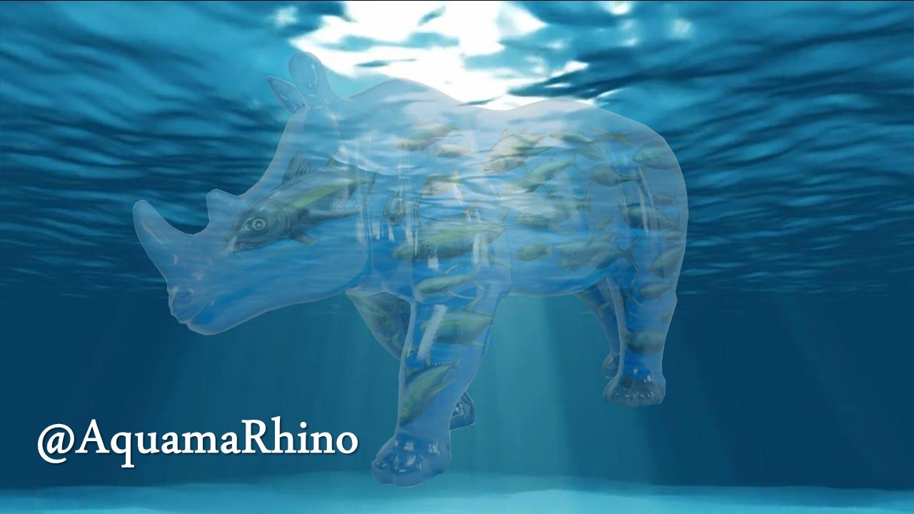 Aquamarhino cover 2.png