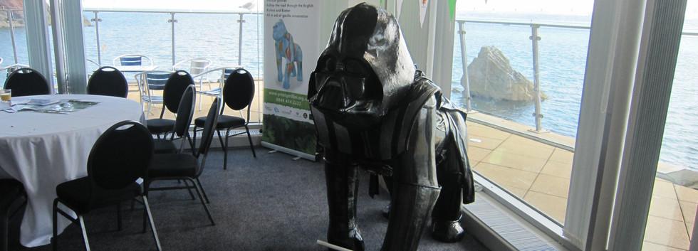 Great Gorillas Flotilla camera 347.jpg