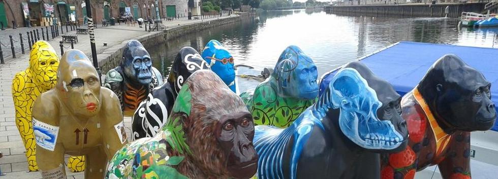 Great Gorillas Flotilla camera 413.jpg
